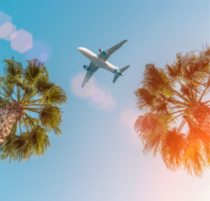 Airplane in the sky flying over palm trees, cheap vacation ideas